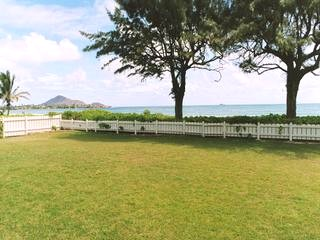 Huge backyard on Kailua Beach